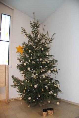 Tannenbaum Weihnachten 2013 (Foto: C. Pietzsch)