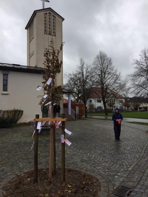 Luthereiche Pflanzaktion im November 2017
